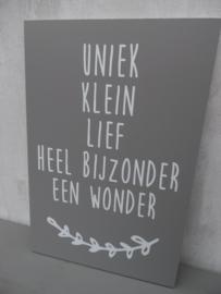 Tekstbord: Uniek Klein Lief