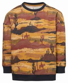 Sweater Baran - Noppies