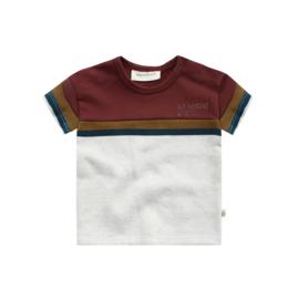 Shirt Stripe Bob - Your Wishes