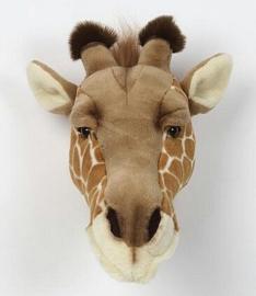 BIBIB Giraf