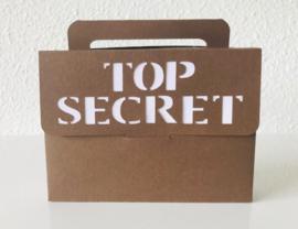 Top secret bruin