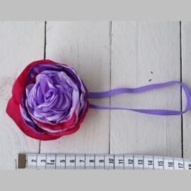 HB B Paars Lavendel/RozeRood