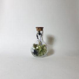 Flask of Hope Sperare 250 II AE12