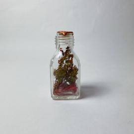 Flask of Hope Dara    AU12