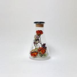 Flask of Hope KIBO 250 II T3