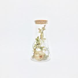 Flask of Hope TOIVO G01