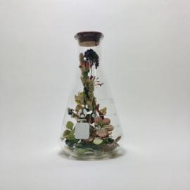 Flask of Hope Kibo 500 II O9