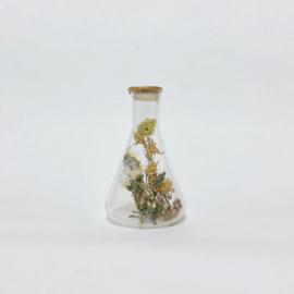 Flask of Hope KIBO 100 II K11