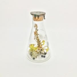 Flask of Hope KIBO 300 II H15