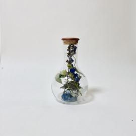 Flask of Hope Sperare 250 II AD11