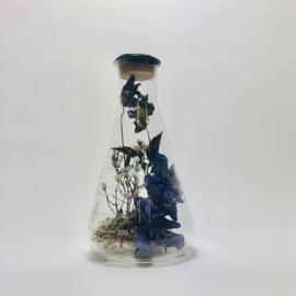 Flask of Hope Kibo 500 II O8