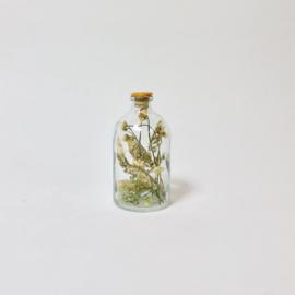 Flask of Hope HOPPAS II W19