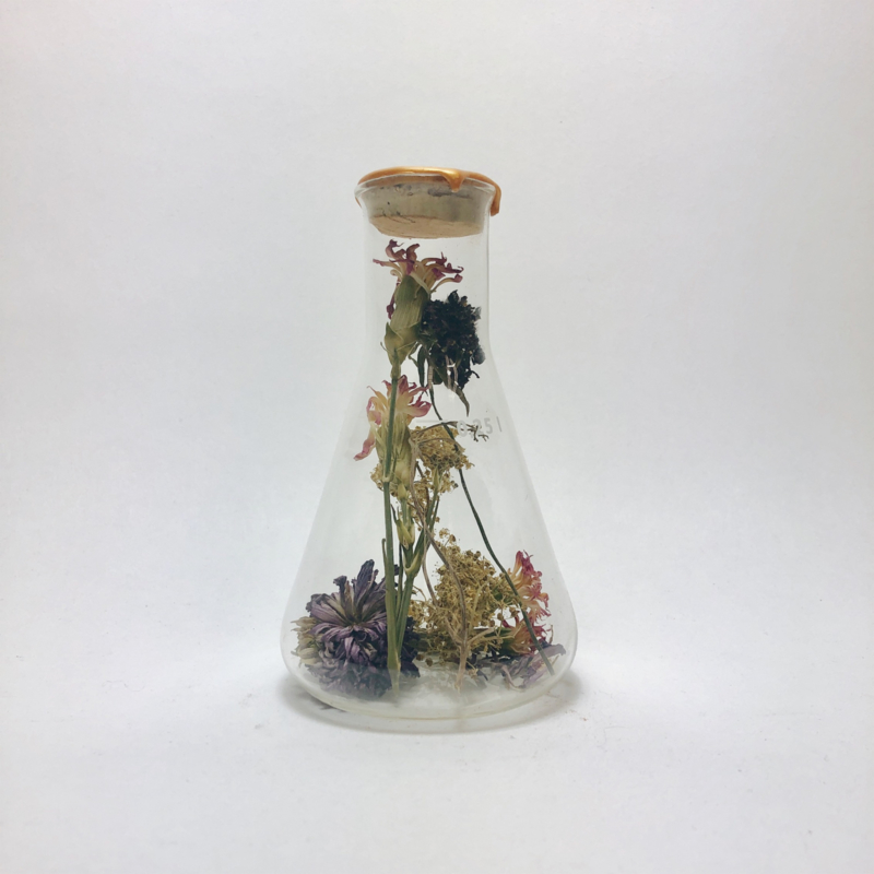 Flask of Hope KIBO 250 II O3