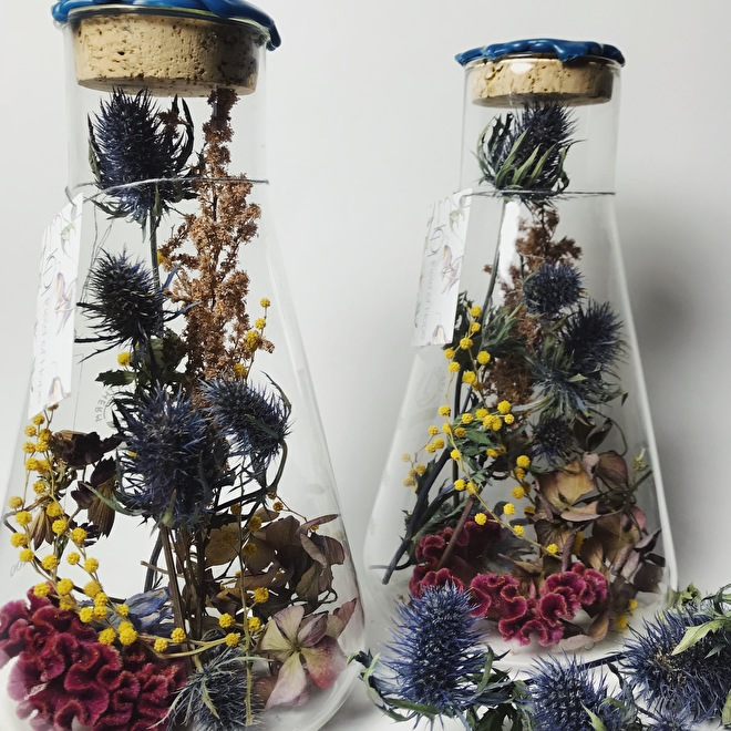 Thistles in two flasks