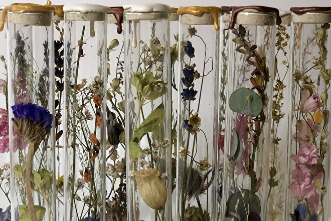 dried flowers in tubes