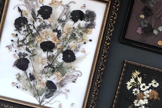 fleursséchées dans un cadre