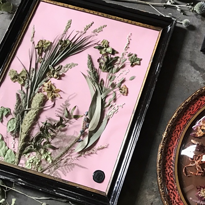 Gedroogde bloemen in lijst