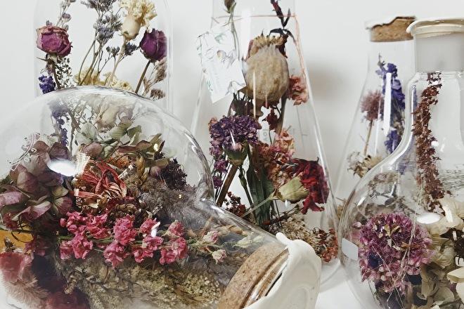getrocknete Blumen in Flaschen