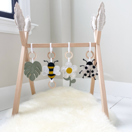 Babygym insecten