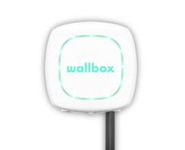 Wallbox Pulsar PLUS Type 2  - Wit - 7,4 kW - 5m