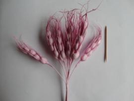 Bloemen aren roze 10 stuks