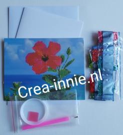 kaart hibiscus