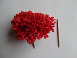 Bloemen foam met bollentjes rood
