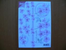3d knipvel bloemen Joy A5 formaat 6010 0013