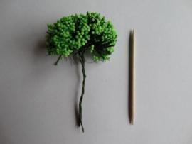 Bloemen klein bosje takjes met bollentjes groen