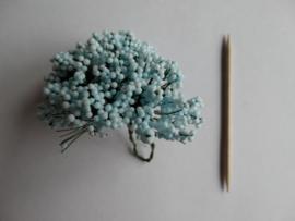 Bloemen klein bosje takjes met bollentjes licht blauw