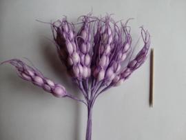Bloemen aren paars 10 stuks