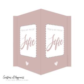 Geboortebord | Hoera een meisje! | Roze