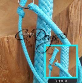 24 - Turquoise PPM (U24)