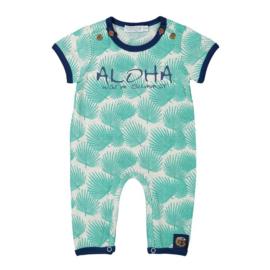 Dirkje baby 1pce boxpakje, light grey/aqua green -  So soft Aloha