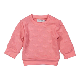 Dirkje sweater haerts - So Bright Forever