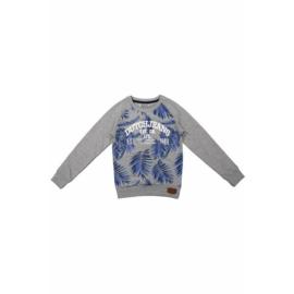 DJ Dutchjeans sweater on aruba met palmboom print