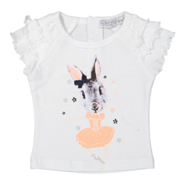 Dirkje baby t-shirt white, bunny - So fresh bowtique