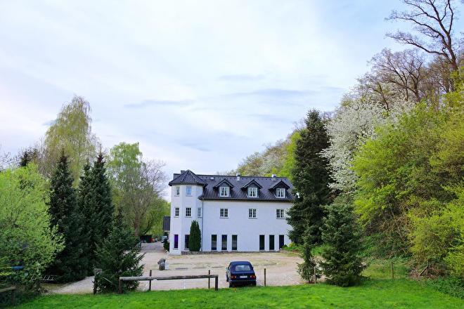 bad munster-hotel-landgasthaus steinsmuhle-hotelletjeindeeifel.nl.jpg