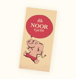 Rechte sticker Noor