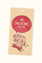 Doopsuikerlabel Noor