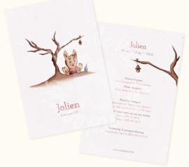 Geboortekaartje: Jolien