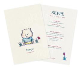 Geboortekaartje: Seppe
