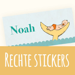 Doopsuiker: rechte stickers I Ineke de Wit