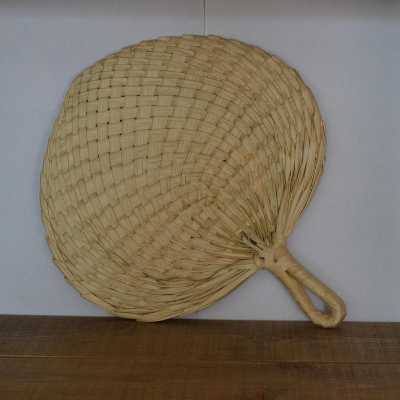 Hand Fan Palm Leaf