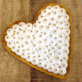 Hartvormige taartvorm met losse bodem