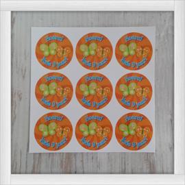 Stickers diameter 3 cm.