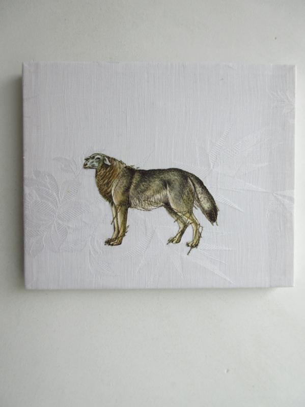 Wolfsschaap