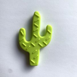 Cactus - licht groen