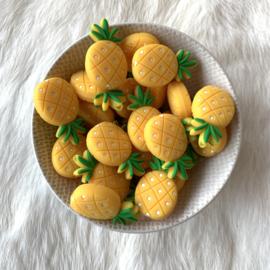 Ananas kraal