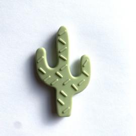 Cactus - lint